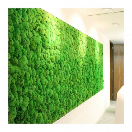 yosun-duvar-dikey-bahce-pole-moss-wall-duvar-bahce