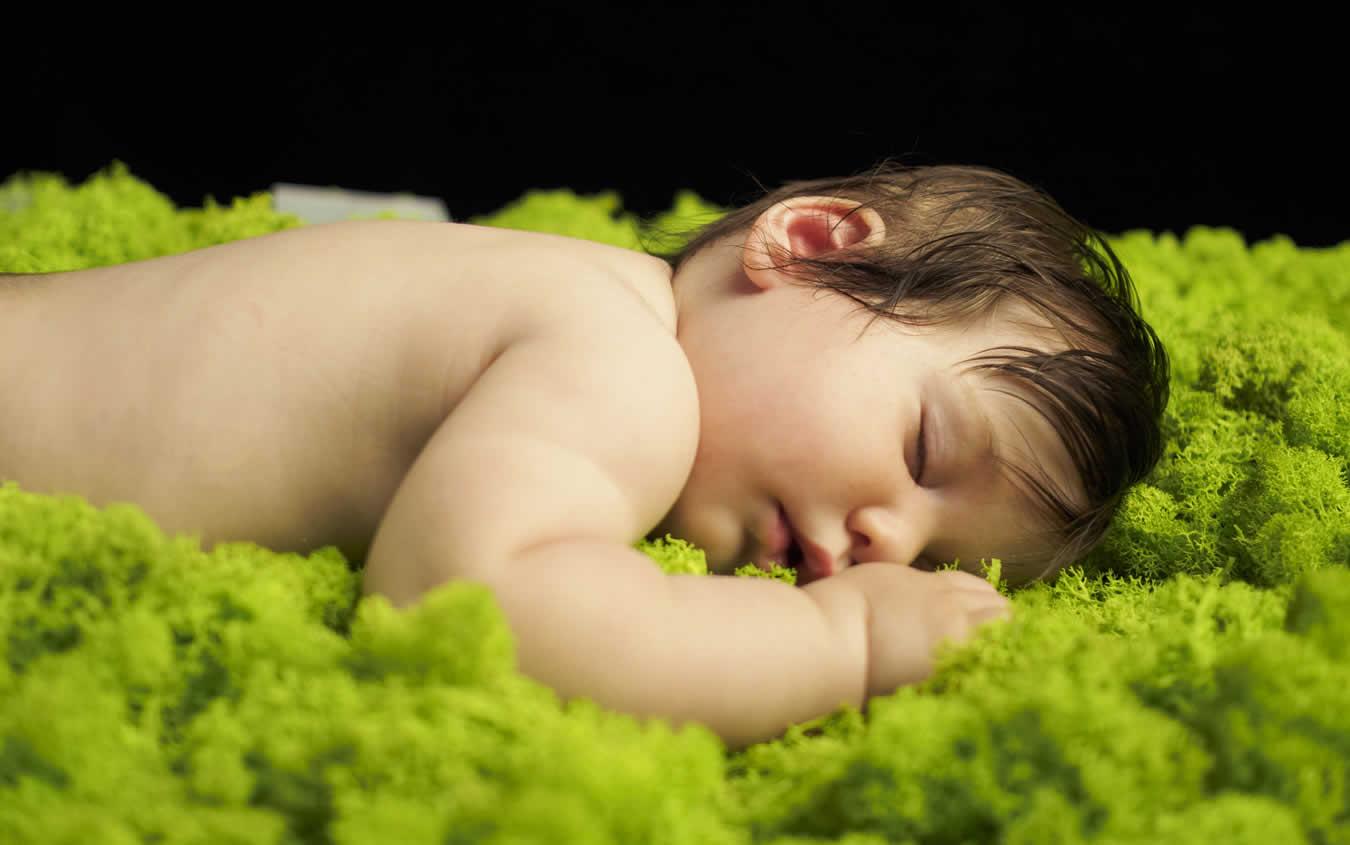 Ekolojik ve Doğal Ürünler